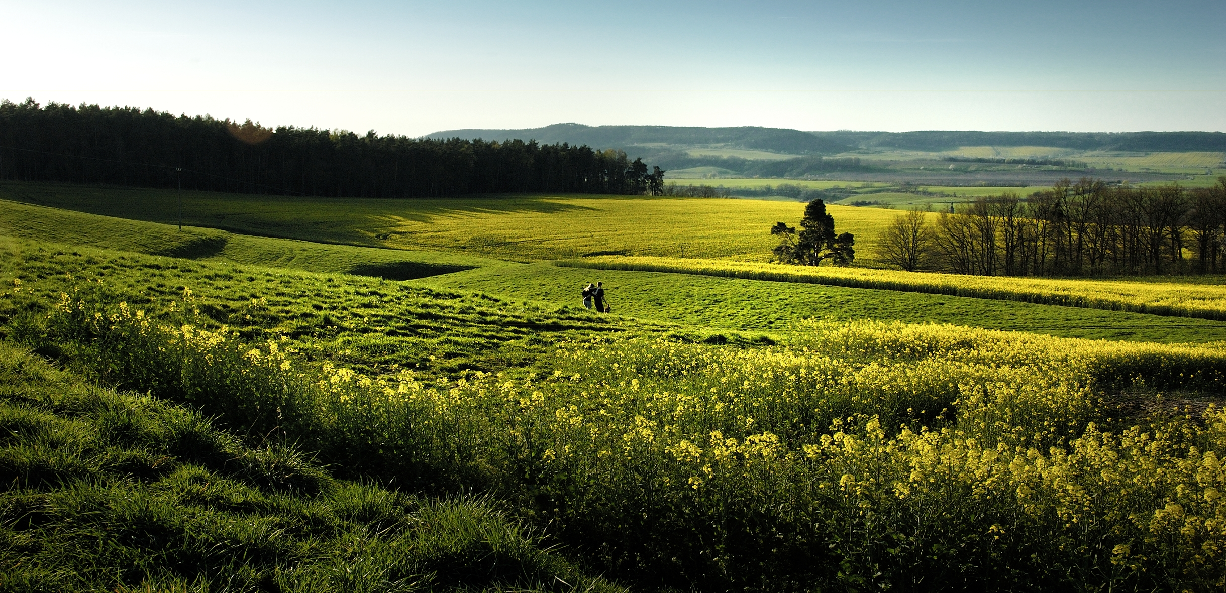 Thüringer Hügellandschaft